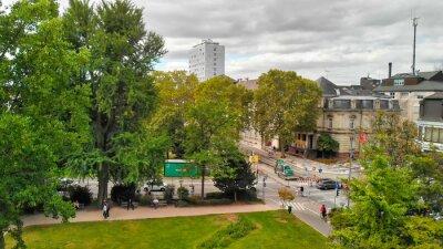 HEIDELBERG, GERMANY - SEPTEMBER 2019: Aerial view of city park in summer season