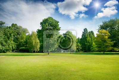 Poster Helle Sommer sonnigen Tag im Park mit grünen frischen Gras und Bäume.