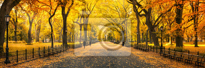 Poster Herbst Panorama im Central Park in New York City, USA
