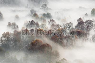 Poster Herbstlandschaft, Italien