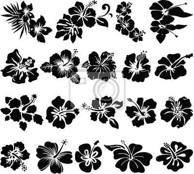 Hibiskus-blume silhouetten wandposter • poster aloha, Hibiskus ...