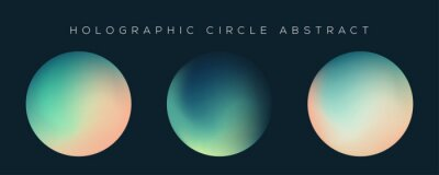 Poster Holographic circle on dark background. Gradient of polar lights, set of holographic circles. Vibrant abstract gradient set.