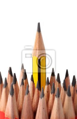 Holzbuntstifte auf weißem Hintergrund