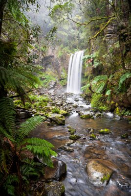 Poster Hopetoun Falls, a secluded waterfall in the Otway Ranges, Australia