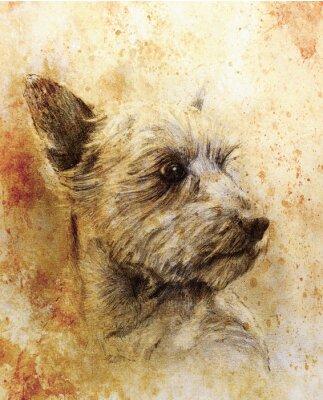 Poster Hund Bleistiftzeichnung auf altem Papier, Vintage-Papier und alte Struktur mit Farbflecken.
