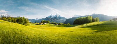 Poster Idyllic mountain landscape in the Alps with blooming meadows in springtime