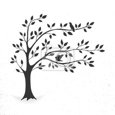 Poster Illustrationsbaum mit Blättern und Vögeln. Silhouette auf weißem Hintergrund.