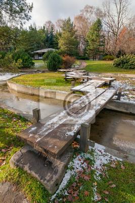 Im Herbst Japanischer Garten Mit Einer Holzbrücke Teich Und