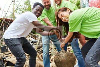 Poster Junges Team Freiwilliger pflanzt einen Baum