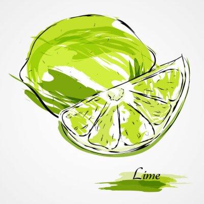 Poster Kalk Früchte