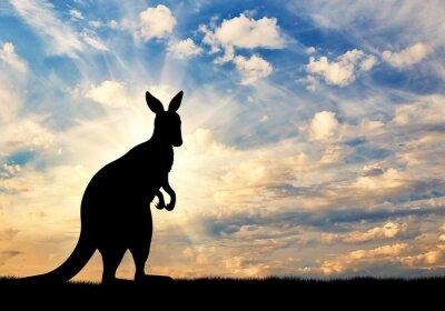 Poster Känguruhschattenbild gegen einen Himmel