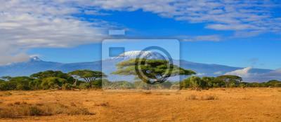 Poster Kilimanjaro Berg Tansania Schnee bedeckt unter bewölkten blauen Himmel gefangen Whist auf Safari in Afrika Kenia.