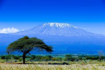 Kilimanjaro Landschaft