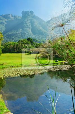 Kirstenbosch botanischen Gärten, Kapstadt, Südafrika