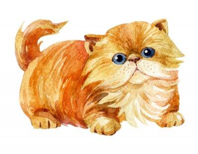 Poster Kitten sitzen.
