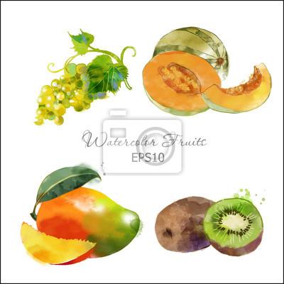 Kiwi, Trauben, Melone, Mango