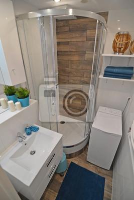 Kleines badezimmer mit dusche wandposter • poster privies ...