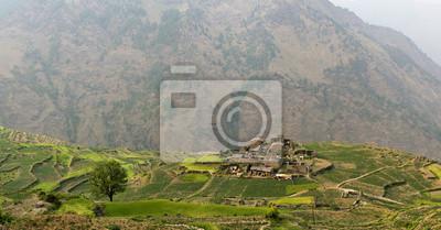 Kleines Dorf unter Reihen grünen Feldern