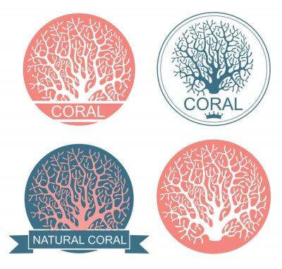 Poster Koralle