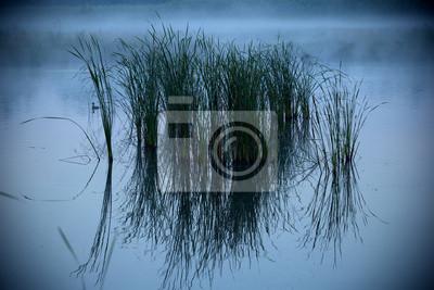 kühlen See an einem nebligen Morgen
