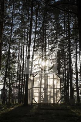 Kunstgegenstände in den Wald