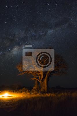 Lagerfeuer unter Baobabbäumen und Milchstraße