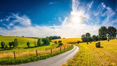 Poster Landschaft im Sommer mit heller Sonne, Wiesen und goldenem Maisfeld im Hintergrund