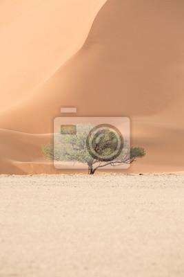 Landschaft in Sossusvlei, Namibia.
