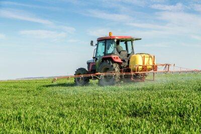 Poster Landwirt sprühenden grünen Weizenfeld