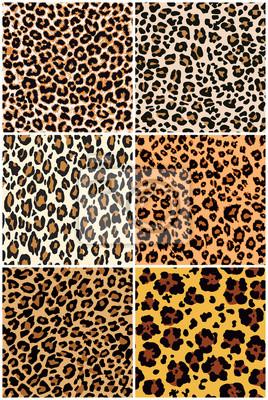 Leopard  skin seamless pattern  six different abstract vector wild fur  wallpaper