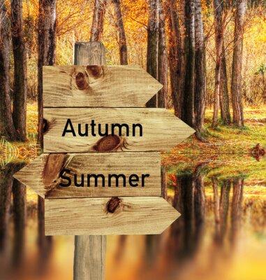 Poster llego el otoño