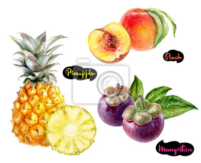 Poster Mangosteen Ananas Pfirsich Aquarell