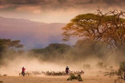 Masai Hirten mit Herde und Ziegen