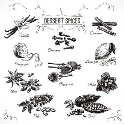 Poster Mit Dessert Gewürze Vektor handgezeichneten gesetzt.