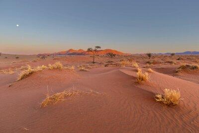 Moon above the horizon at sunset in the Namib Desert
