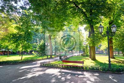 Poster Morgen im Stadtpark, helles Sonnenlicht und Schatten, Sommersaison, schöne Landschaft