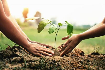 Poster mother with children helping planting tree in nature for save earth. environment eco concept
