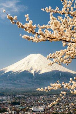 Poster Mount Fuji mit Zweigen der Kirschbaum, Japan