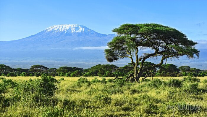 Poster Mount Kilimanjaro