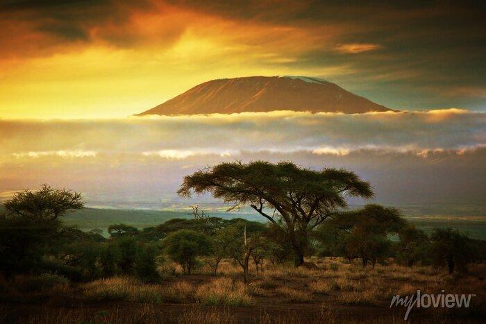 Poster Mount Kilimanjaro. Savanna in Amboseli, Kenia