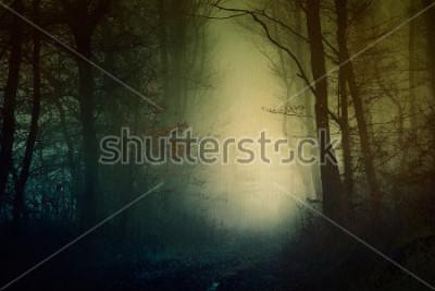 Poster Mystische dunkle Waldtapete