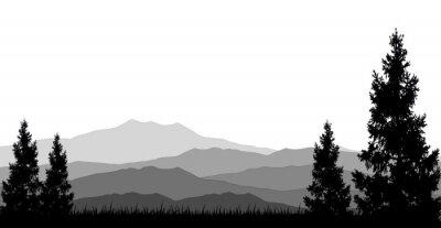 Poster Nadelwälder für Sie entwerfen