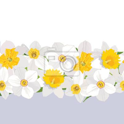 nahtlose Muster mit Blumen Narzissen borde