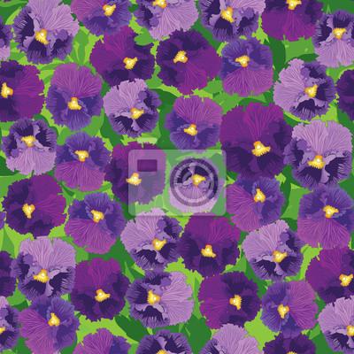 nahtlose Muster von violett und lila Stiefmütterchen, Hintergrund