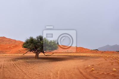 Namib-Wüstenlandschaft, Namibia