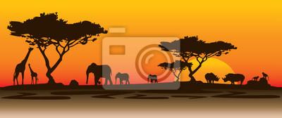 Poster Nashorn landschaft afrika