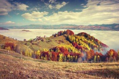 Poster Nebel Herbst Morgen in den Karpaten.