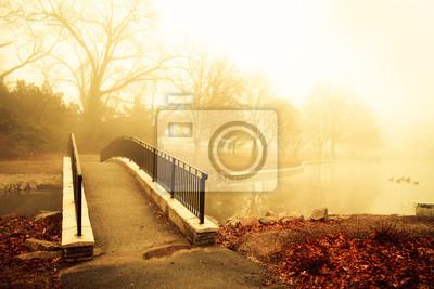 Poster Nebel und goldenen Morgenlicht mit Steg von Teich