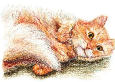 Poster Nette schöne Ingwer flauschige Katze Hand gezeichnete Kunst