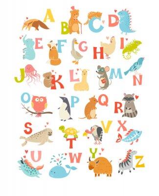 Poster Nette Vektor-Zoo-Alphabet. Lustige Karikaturtiere. Vektor-Illustration EPS10 isoliert auf weißem Hintergrund. Briefe. Lesen lernen
